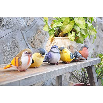 VILIGHT Garden Statue Birds Decor Gifts for Mom Aunt and Sister - Outdoor Indoor Decoration at Lawn and Yard - Real Birds Size Set of 6 : Garden & Outdoor