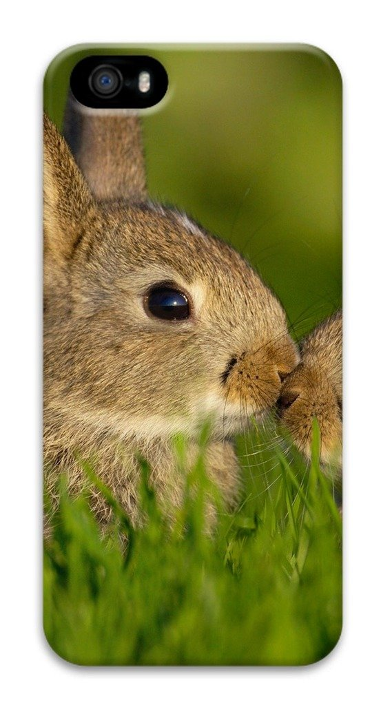 3D Surrounded All Printed Case For iPhone 5S Technology Apply To 4.0 Inch Hard case non-slip case Hard iPhone Case Colored case Easy To Operate Cute Rabbits