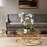 Nora Coffee Table Gold See below