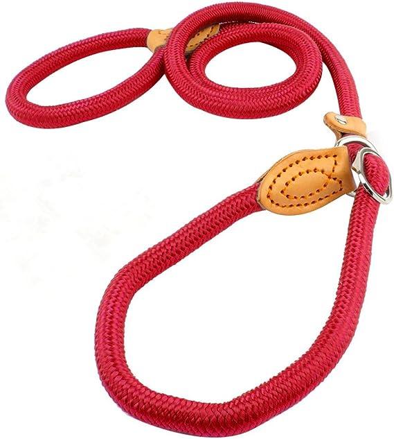 UEETEK 1,2 CM perro Slip plomo formación correa Collar Nylon plomo para mascotas entrenamiento (rojo): Amazon.es: Productos para mascotas