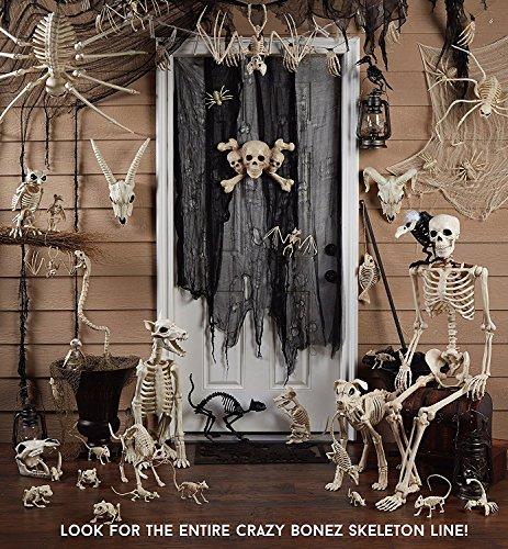 VaThaStore Fantasy Bone Skeleton Crow Raven Animal Skeleton Bones for Horror Halloween Decoration 80%OFF