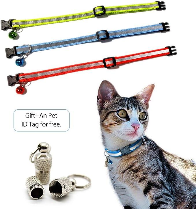 cane gattino morbido e multicolore adatto al gatto Andiker nero Collare per animali da compagnia con campanellino e etichetta del nome