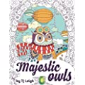 Majestic Owls A Stress Relief Adult Coloring Book Adult Coloring Book Academy Stress Relief Series Volume 1