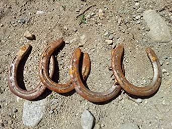 Used horseshoes clothing for Where to buy used horseshoes