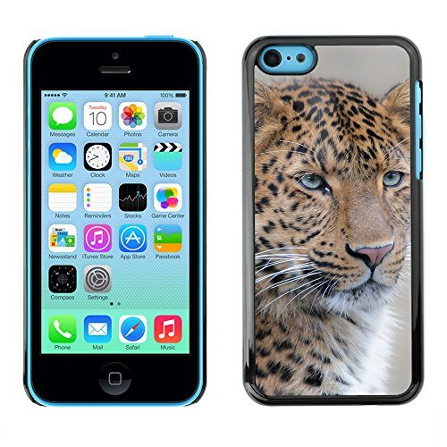 Premio Sottile Slim Cassa Custodia Case Cover Shell // F00031072 Leopard closeup // Apple iPhone 5C