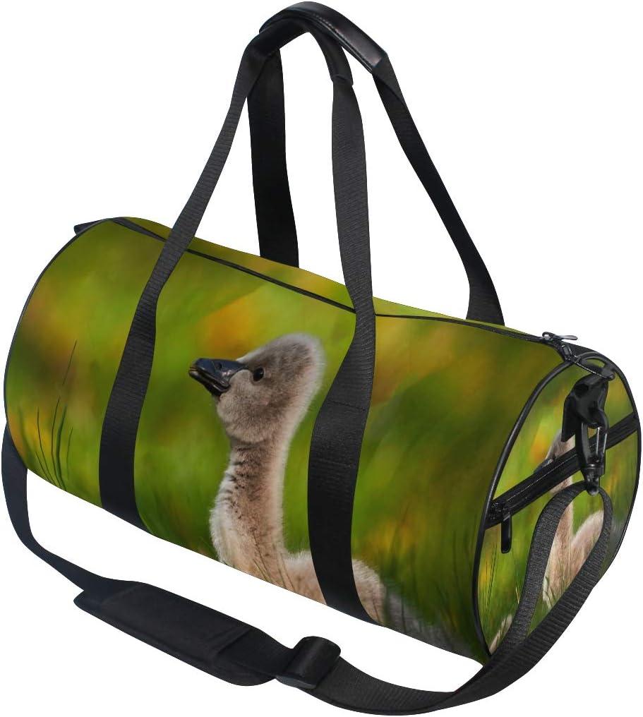 Sports Bag Black Swan Mens Duffle Luggage Travel Bags Kid Lightweight Gym bag