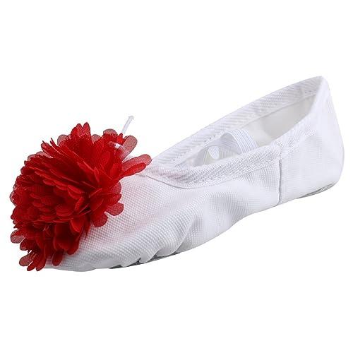 Zapatos De Baile Zapatillas De Ballet Zapatillas De Gimnasia Hijo A Practicar Goma para Chicas: Amazon.es: Zapatos y complementos