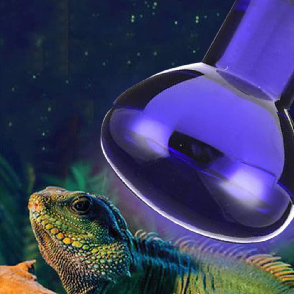 100W,Blue 25//50//75//100W Lamp Spot Light Heating Lamp Reptile Lighting E27 Basking Spotlight Reptile Heat Bulb