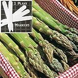 Atlas Asparagus (Organic/heirloom) 325 Seeds Upc 646263363041 + 2 Plant Markers