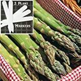 Atlas Asparagus (Organic/heirloom) 325 Seeds Upc 646263363041 + 2 Plant Markers