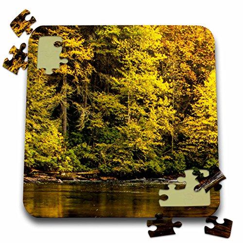 Danita Delimont - Strea,s - USA, North Carolina, Brevard. Landscape in Pisgah National Forest. - 10x10 Inch Puzzle (pzl_208235_2)