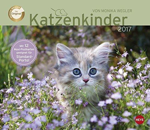 Wegler Katzenkinder Maxi Postkartenkalender - Kalender 2017