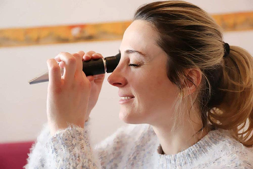 DT Vinification Refractom/ètre Alcool Hand Held Alcool R/éfractom/ètre 0-80/% pour Fabrication Brassage de la Vin /Échelle Double