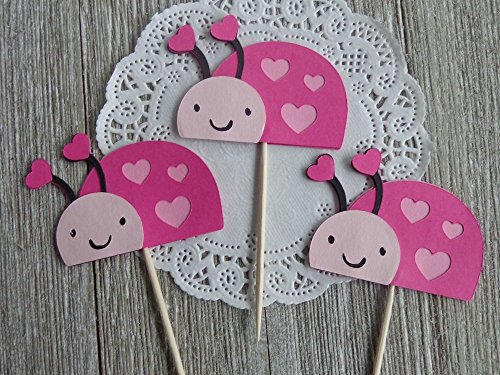 Valentine's Day Ladybug Cupcake Toppers Food Picks (Set of 12) (Ladybug Toppers Pink Cupcake)