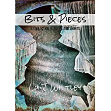 Bits & Pieces: A Collection of Poems & Shorts