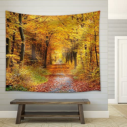 Road in The Autumn Forest Fabric Wall
