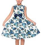 balasha Little Girls Sleeveless Flower Print Back Zipper Pleated Dress with Belt
