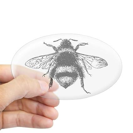 Amazoncom Cafepress Vintage Honey Bee Sticker Oval Bumper Sticker