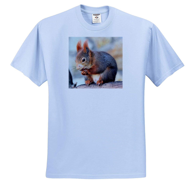 Adult T-Shirt XL 3dRose Sven Herkenrath Animal ts/_309135 Funny Squirrel Mammal Animal Nature Wildlife