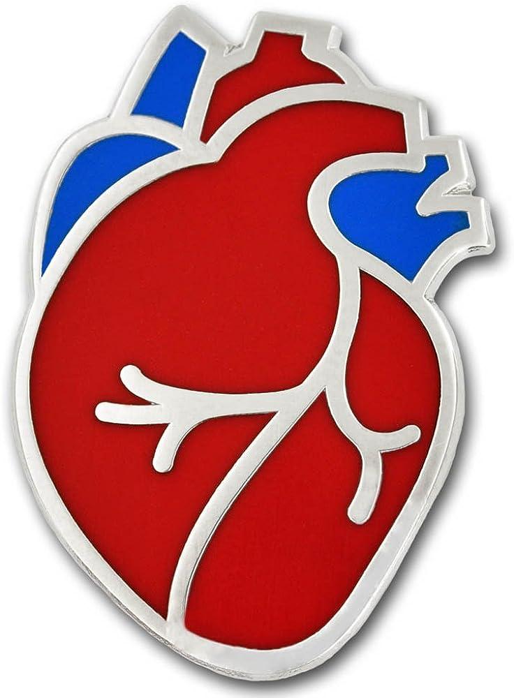 PinMart The Human Heart...