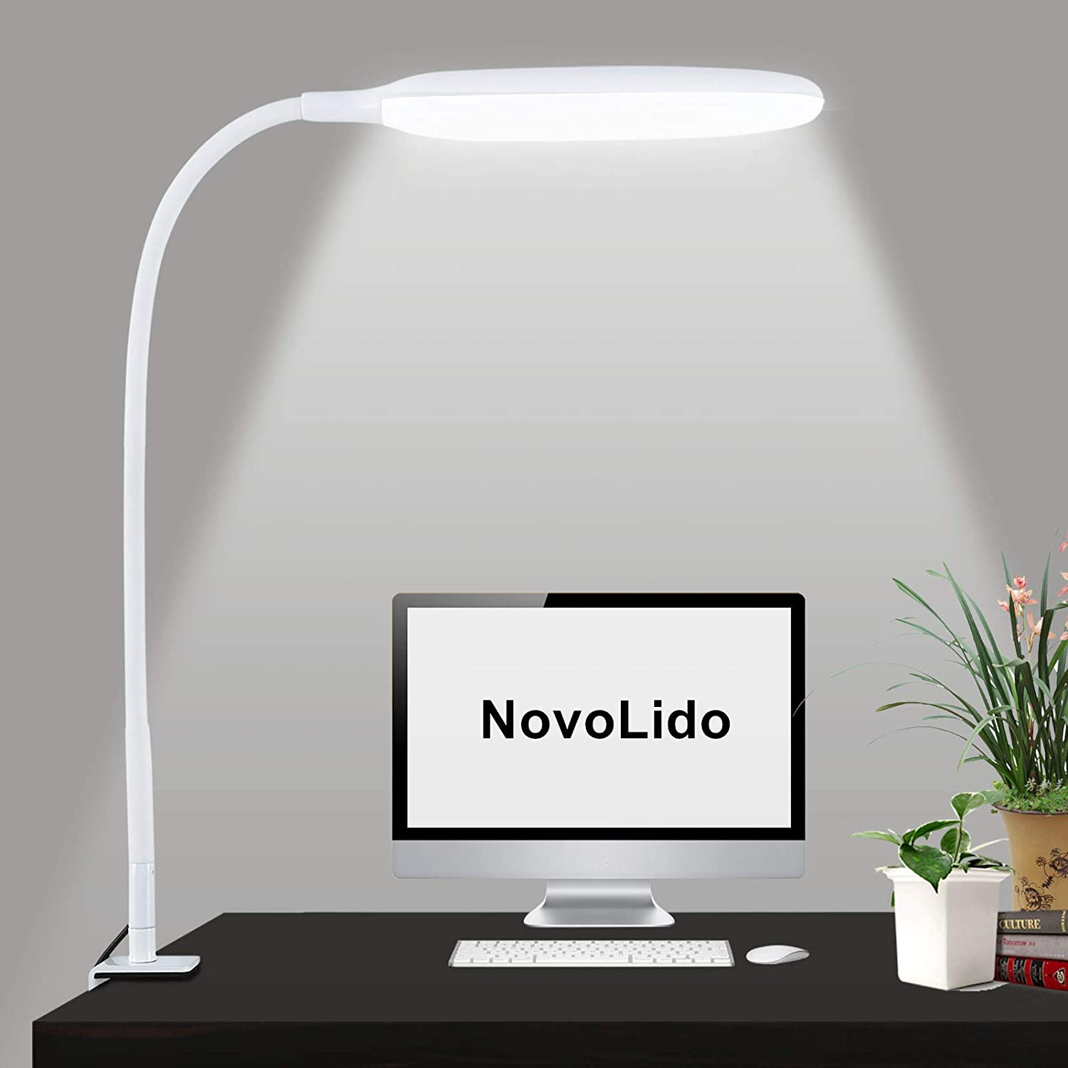 NovoLido 10W LED Desk Lamp with Clamp, 360° Flexible & Portable Desk Lamp with Eye Protection, 3 Color Modes & Stepless Dimming, Clip on Desk Lamp for Home, Office, Bedroom, College Dorm, White