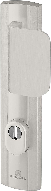 Bricard 9910071 - Juego de puños blindados sobre placa de expresión, rodamiento y alerón para puerta de entrada (para cilindro europeo), color plateado
