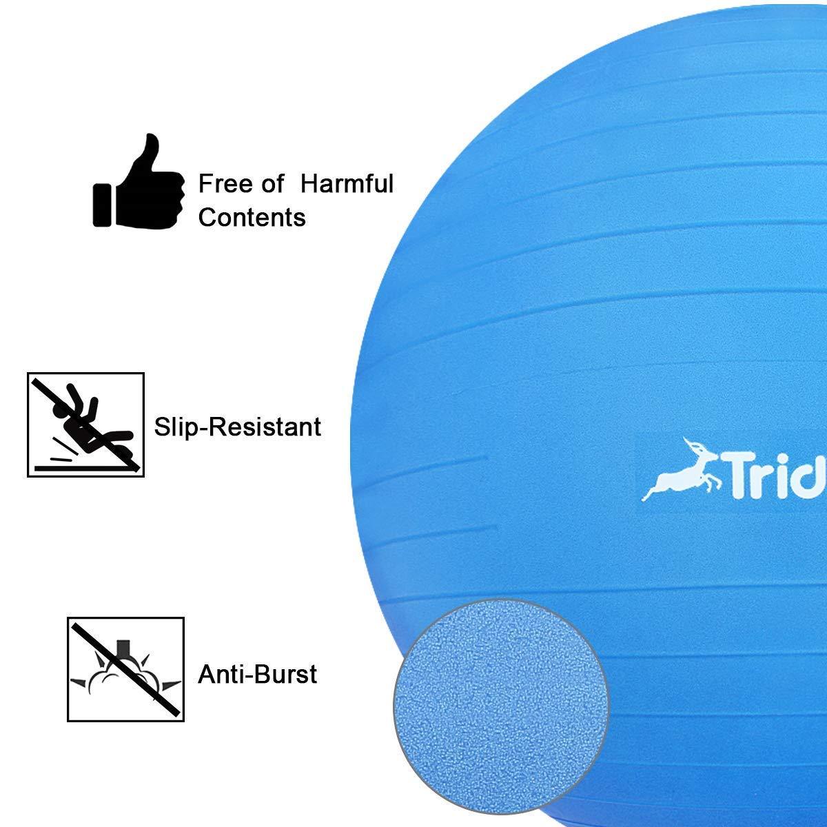 Trideer 45-85cm Exercise Ball, Birthing Ball, Ball Chair, Yoga Pilate Fitness Balance Ball with Pump Plug Kit, Anti-Slip & Anti-Burst (Dark Blue, 65cm) by Trideer (Image #7)