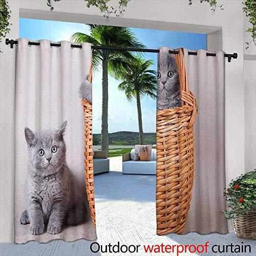 - Tim1Beve Sliding Door Curtain Kitten Three British Cats Kitties in Basket Adorable Baby Animals Fluffy Pets Waterproof Patio Door Panel 108