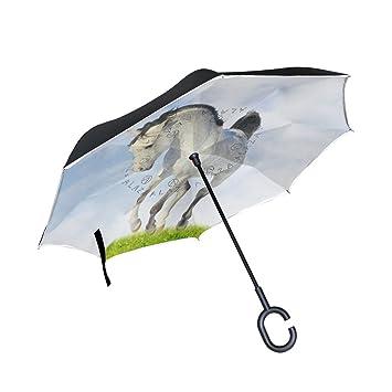 XiangHeFu - Paraguas invertido de Doble Capa para Caballo árabe ...