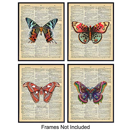Vintage Butterfly Dictionary Art Prints - Upcycled Wall Art Poster Set - Chic Rustic Home Decor for Bedrooms, Living Rooms, Girls Room, Nursery - Great Gift for Women, Steampunk - - Art Poster Butterfly