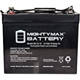 12V 75Ah SLA Battery for Wayne ESP25 Back-Up Pump - Mighty Max Battery brand product