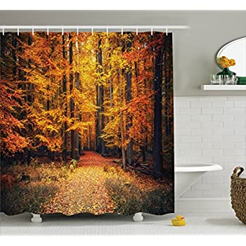 Amazon.com: Woodsy Shower Curtain Forest North Woods Falling ...