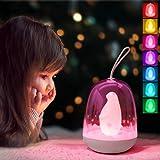 多彩LEDランプ ナイトライト タイマーモード機能付き 雰囲気 常夜灯 ベッドサイドランプ USB充電式 電池付きベッドランプ 寝起きライト 授乳ライト「RGB 256色調節可能 タイマー付き」 ( ホッキョクグマ)