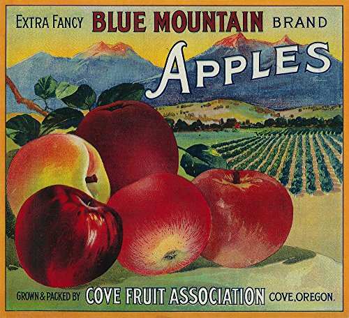 Blue Mountain Apple - Vintage Crate Label (24x36 SIGNED Print Master Giclee Print w/Certificate of Authenticity - Wall Decor Travel Poster)