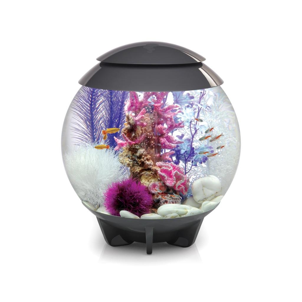 biOrb HALO 30 Aquarium with Moonlight LED Light – 8 Gallon, Grey