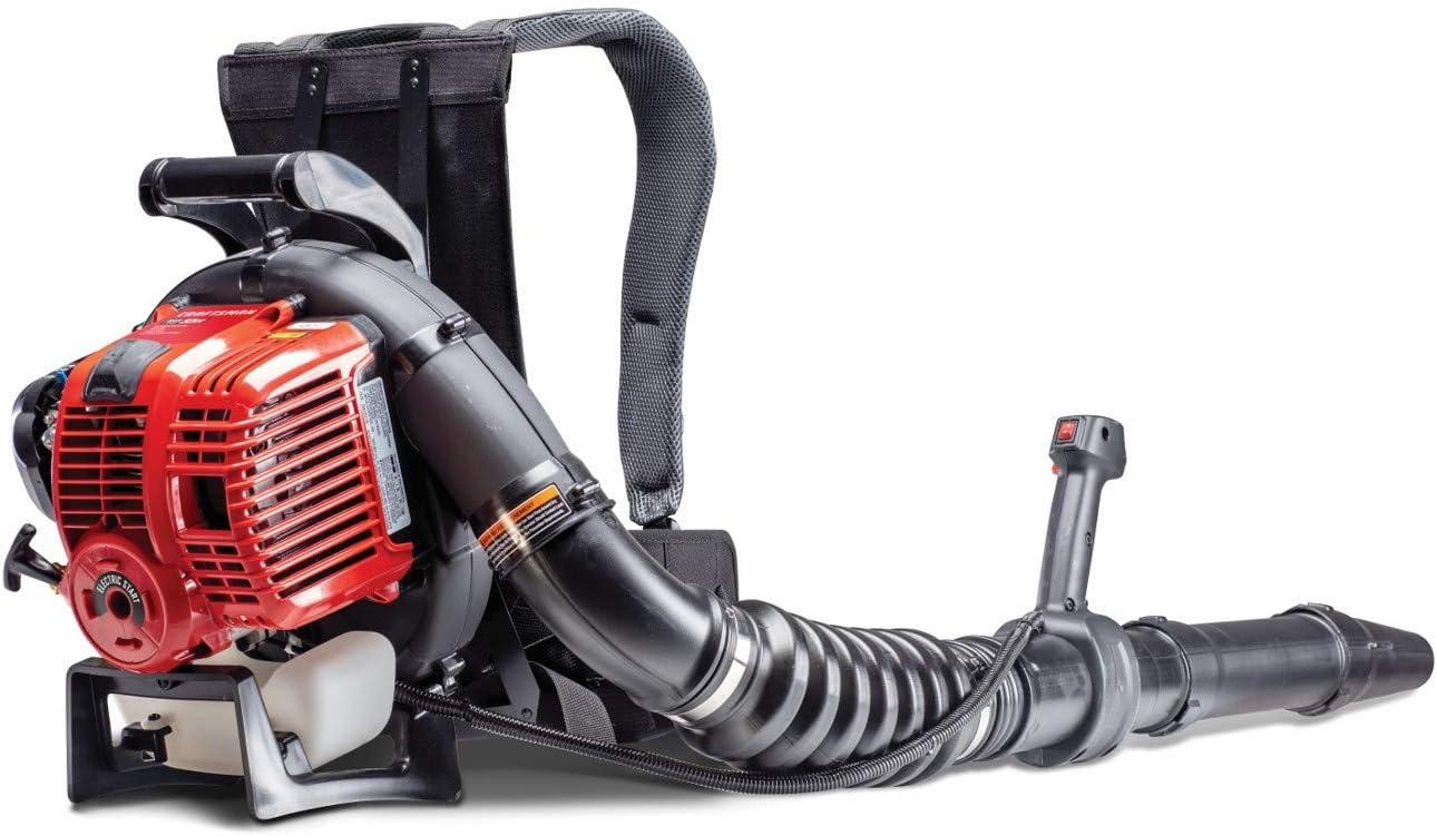 Amazon.com: Craftsman CMXGAAMR32BP - Mochila de motor de 4 ...
