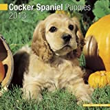 Cocker Spaniel Puppies 2013 Wall Calendar #10203-13