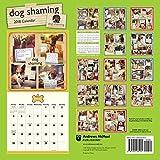 Dog Shaming 2018 Wall Calendar