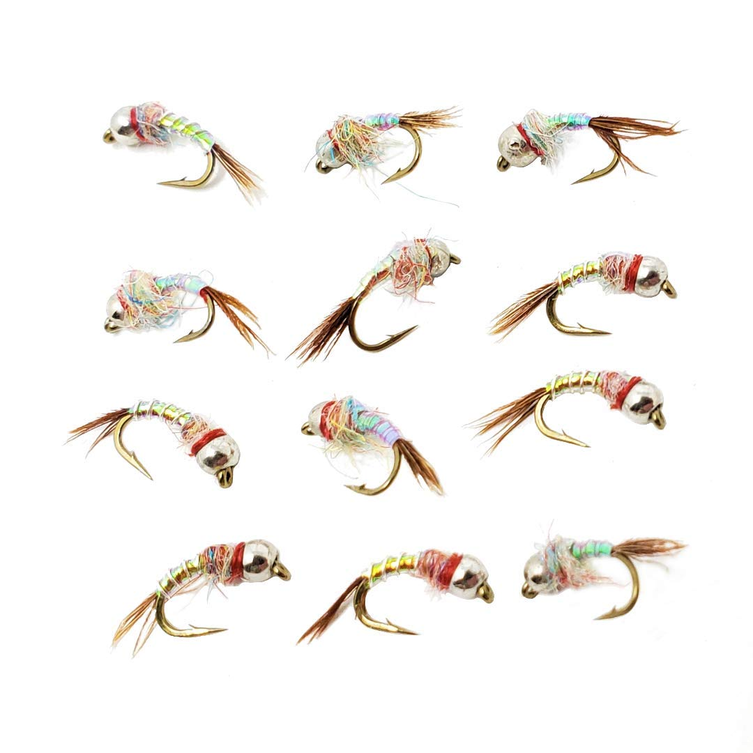 Fly Crate Tungsten Rainbow Warrior Midge | Fly Fishing Trout Wet Nymph Assortment (#18-12 Flies) by Fly Crate