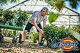 Dickies Men's Dri-Tech Moisture Control 6 Pairs No