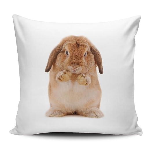 Funda de cojín/almohada/cojín - Diseño: Conejo marrón putzt ...
