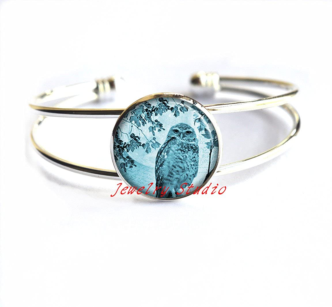 owl lovers gift owl jewellery owl Bracelets blue moon jewelry blue moon owl Bracelets-HZ00388 owl jewelry