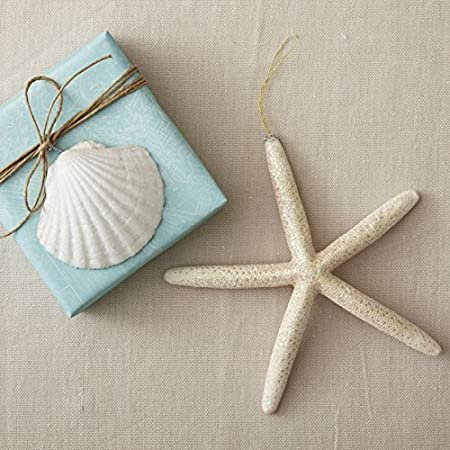 61EKAKFuQEL._SS450_ Seashell Christmas Ornaments