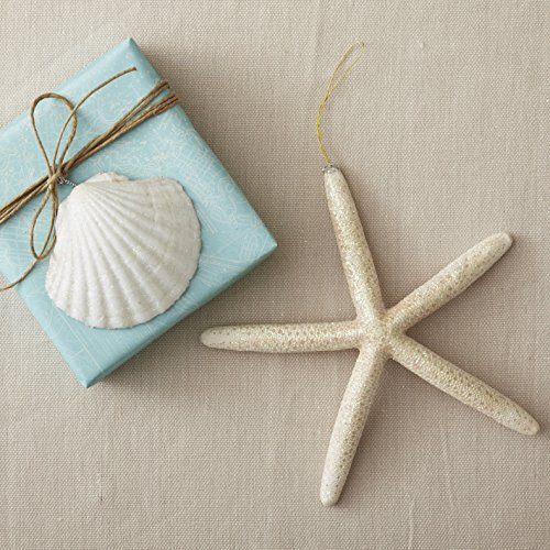61EKAKFuQEL Amazing Seashell Christmas Ornaments