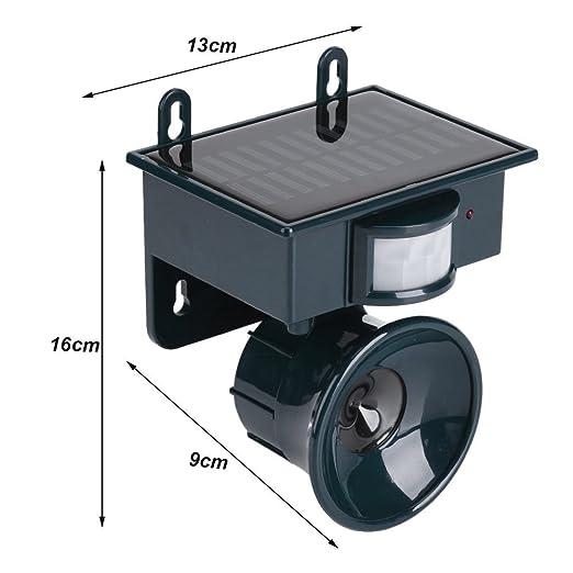 Solar Powered Sensor de movimiento PIR Repelente de plagas por ultrasonidos Bird Dog Cat Fox Mouse Chaser: Amazon.es: Hogar