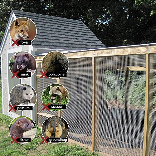 36inch Hardware Cloth 100 ft 1/4 Mesh Galvanized Welded Wire 23 gauge Metal Roll Vegetables Garden Rabbit Fencing Snake Fence for Chicken Run Critters Gopher Racoons Opossum Rehab Cage Wire Window by AMAGABELI GARDEN & HOME (Image #6)