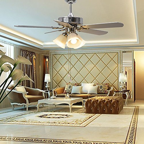 Ceiling Fan In Dining Room