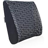 AmazonBasics Memory Foam Lumbar Back Support Pillow - Triangle, Paneled