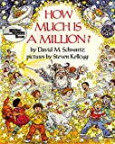img - for How Much Is a Million? book / textbook / text book