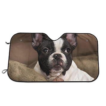 Boston Terrier Dog Auto Front Windshield Visor Car Sun Shade Cover Reversible